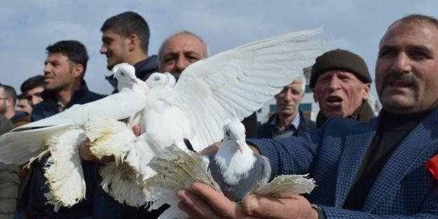 Zeytin Dalı Harekatı için gökyüzüne güvercin bıraktılar
