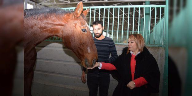 Atçılık ve Atlı Sporları Uygulama ve Araştırma Merkezi kuruldu
