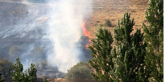 Hekimhan'da 50 hektar alan yandı