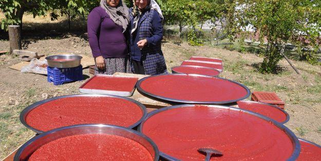 Kadın Girişimcilerden Organik Üretim