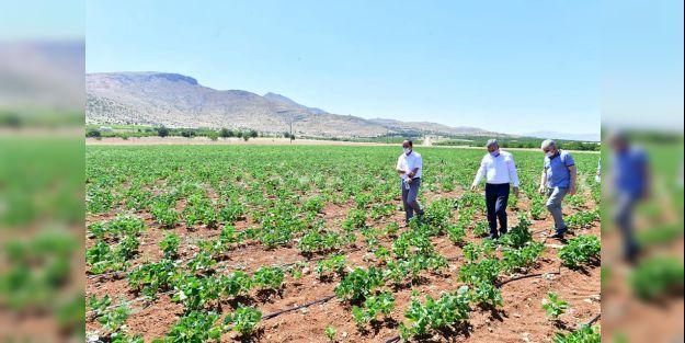 Çınar: 'Doğal ürünlerin sayısını artırmayı hedefliyoruz'