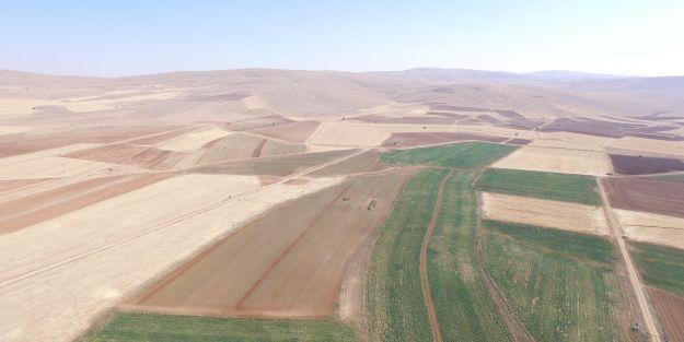 4 yerleşim biriminde arazi toplulaştırma çalışmaları tamamlandı