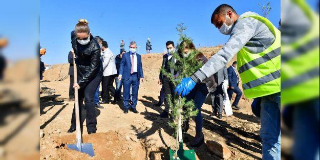 Çınar: 'Millet bahçelerimiz bölgeye değer katacak'