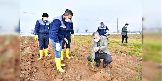 Çınar, tarımsal üretim ve AR-GE sahasını ziyaret etti