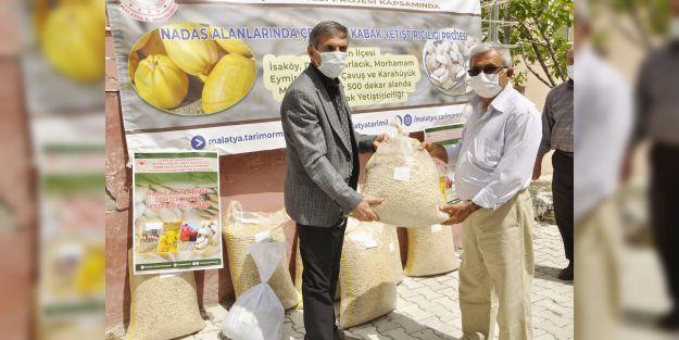 Arguvan'da Çerezlik Kabak Yetiştirilecek