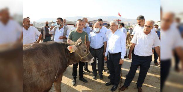 Güder, canlı hayvan pazarını ziyaret etti