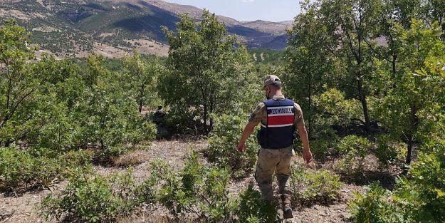 Jandarma'dan ormanlara drone ile kontrol