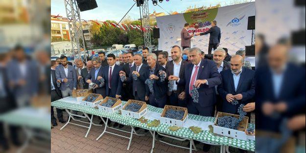 İstanbul'da Arapgir Üzüm Festivali Sona Erdi