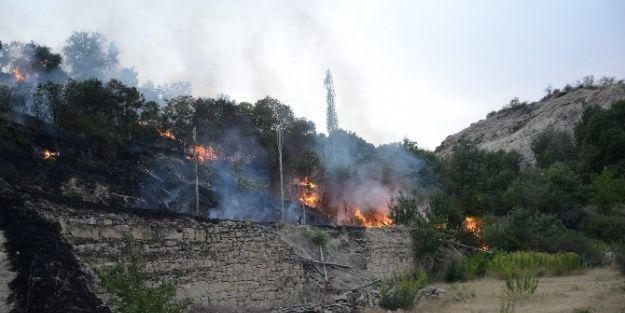 Darende'de Yangın Korkuttu