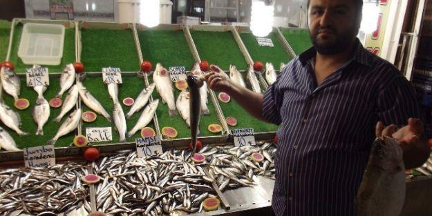 Deniz Balıkları Tezgahlarda