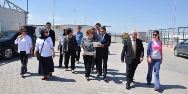 Halk Sağlığı Kurum Başkanı Prof.dr. Seçil Özkan,  Konteyner Kenti Ziyaret Etti