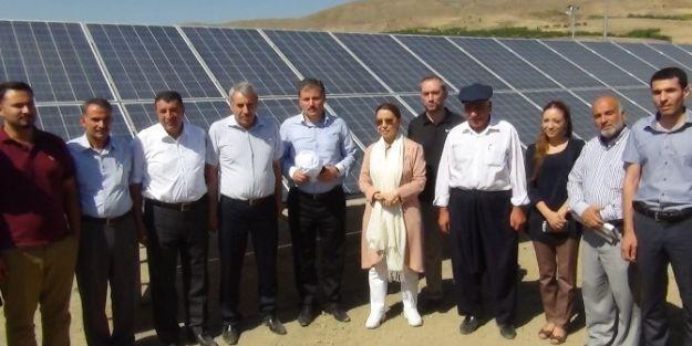 Kayısı Bahçelerini Güneş Enerjisi Santrali İle Sulayacaklar
