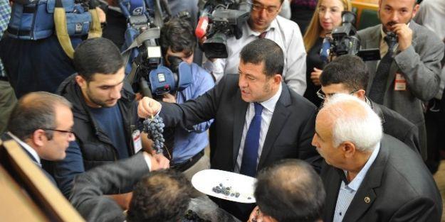 Malatya Milletvekili Veli Ağbaba,  Tbmm'de Arapgir Üzümü Dağıttı