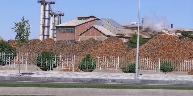 Malatya Şeker Fabrikası'nda Pancar Kampanyası Sona Erdi