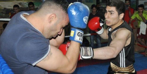 Malatyalı Boksörler, Türkiye Şampiyonasına Hazırlanıyor