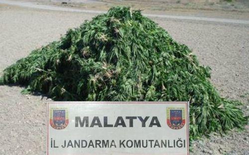 Polis ve Jandarmadan uyuşturucu operasyonu