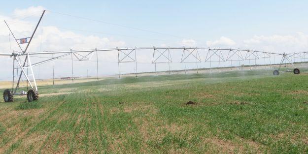 Tarımsal araziler belirli oranın altına bölünemeyecek