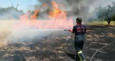 Bir günde 68 yangın